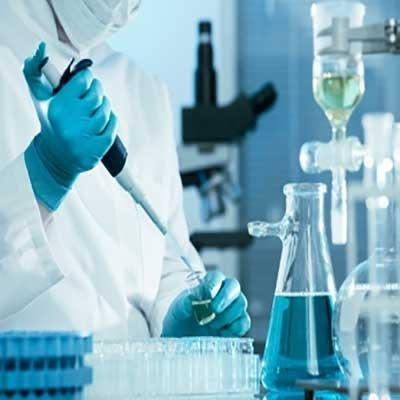 طراحی-سایت-آزمایشگاه-تشخیص-طبی-آزمایشگاه-ها--طراحی-سایت-دیمن-ارتباط