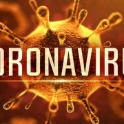 هزینه تست کرونا ویروس چقدر است | هزینه درمان کرونا ویروس چقدر است ؟ | دیمن ارتباط